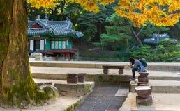 Корейская девушка сидя на Pavillion на секретном саде Стоковые Фото