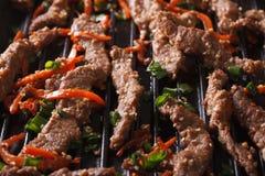 Корейская кухня: bulgogi зажаренного макроса горизонтально Стоковая Фотография