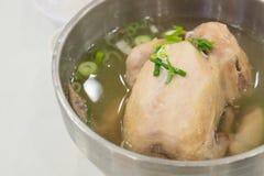 Корейский куриный суп женьшени Стоковое Фото