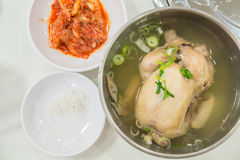 Корейский куриный суп женьшени Стоковое фото RF