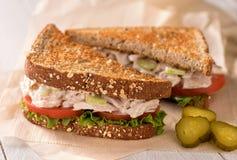 Коренастый сандвич салата тунца Стоковое Изображение