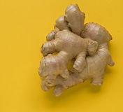корень имбиря Стоковое фото RF