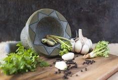 Корень чеснока, перца и кориандра Стоковое Изображение