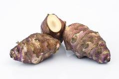 Корень Topinambur (tuberosus подсолнечника) Стоковые Фото
