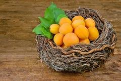 корзина абрикосов Стоковое Изображение
