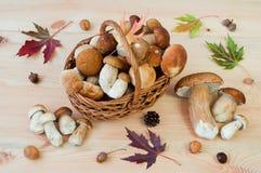 Корзина белизны величает подосиновик edulis на деревянном столе Au Стоковое Изображение
