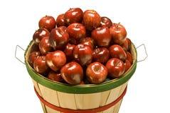 Корзина бушеля заполненная с яблоками Стоковая Фотография RF