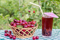 Корзина вишен и компота напитка вишни, сока на предпосылке вишневого дерева Стоковые Фото