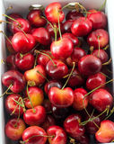 Корзина вишни/вишня предпосылки сладостной вишни с лист Стоковое Изображение RF