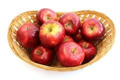 Корзина вполне зрелых яблок стоковые фотографии rf