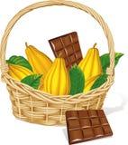 Корзина вполне изолированных стручка и шоколада какао иллюстрация вектора