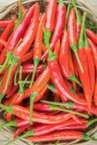 Корзина вполне перцев красного chili на древесине Стоковая Фотография