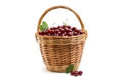 Корзина вполне свежей красной вишни на белой предпосылке Стоковое Изображение