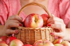 Корзина вполне с яблоками, рукой женщины держа корзину яблока Стоковая Фотография