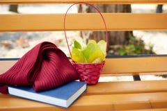 Корзина, голубая книга и красный шарф на стенде в дне осени Стоковое Изображение