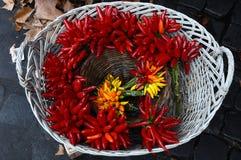 Корзина горячих перцев Стоковое Изображение