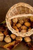 Корзина грецких орехов - 01 Стоковая Фотография