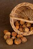 Корзина грецких орехов - 03 Стоковая Фотография RF
