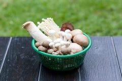 Корзина грибов Стоковое Изображение