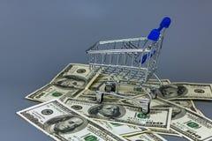 Корзина для товаров на куче долларов Стоковые Изображения RF