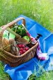 Корзина лета для пикника с вином, хлебом, плодоовощами и закусками Стоковая Фотография RF