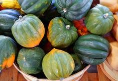 Корзина зеленого и оранжевого сквоша жолудя осенью стоковое изображение rf