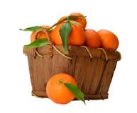 Корзина зрелых мандаринов Стоковые Фото