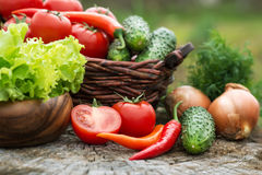 Корзина и деревянная плита с свежими овощами (томатами, cucumbe Стоковое фото RF