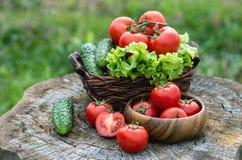 Корзина и деревянная плита с свежими овощами (томатами, cucumbe Стоковое Изображение RF