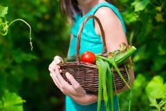 Корзина конца-вверх зеленых цветов в руках женщины Стоковая Фотография RF