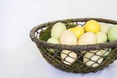 Корзина мха и бледнеет покрашенные яичка на белой предпосылке Стоковые Изображения RF