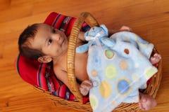 корзина младенца Стоковая Фотография