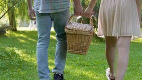 Корзина нося пикника молодой женщины и человека совместно, романтичная дата в парке акции видеоматериалы
