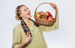 Корзина органических яблок витамин и dieting еда E здоровые зубы сад, девушка садовника с яблоком стоковая фотография rf