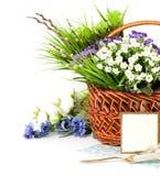 корзина пасха цветет весна Стоковые Изображения