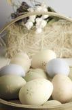 Корзина пасхального яйца Стоковые Фотографии RF