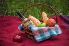 Корзина пикника на красном одеяле на природе Яблоки, белое вино a Стоковое Фото