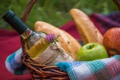 Корзина пикника на красном одеяле на природе Яблоки, белое вино a Стоковые Фото