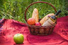 Корзина пикника на красном одеяле на природе Яблоки, белое вино a Стоковая Фотография RF