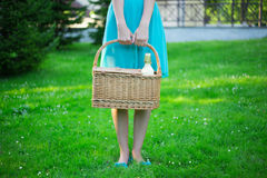 Корзина пикника с бутылкой вина в женских руках Стоковое Фото
