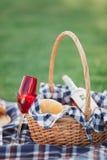 Корзина пикника с напитками, едой и плодом на снаружи зеленой травы в парке лета стоковые изображения