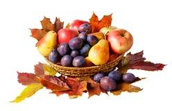 Корзина при плодоовощи и листья осени изолированные на белизне Стоковое Фото