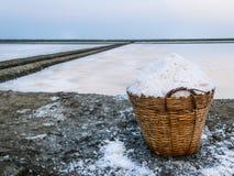 Корзина соли около поля соли Стоковая Фотография