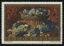 Корзина с виноградинами Katarina Ivanovich Стоковые Изображения