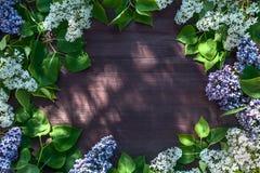 Корзина с вишней на деревянном столе на предпосылке зеленого сада Стоковые Изображения RF