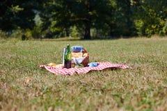 Корзина с едой, хлебом и вином на пикнике Стоковое Изображение
