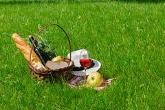 Корзина с едой для пикника с бокалом вина Стоковое Фото