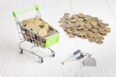 Корзина с золотыми монетками, ключи к дому стоковое изображение rf