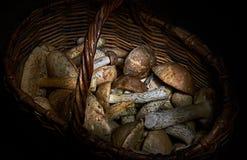 Корзина с концом-вверх взгляд сверху грибов Темное фото стоковое фото