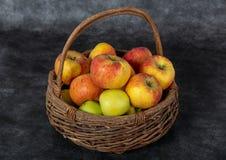 Корзина с красными и желтыми яблоками стоковые фото